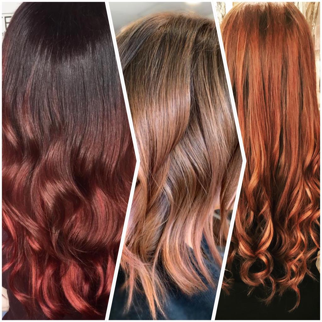 Beautex Haar Farben Experten